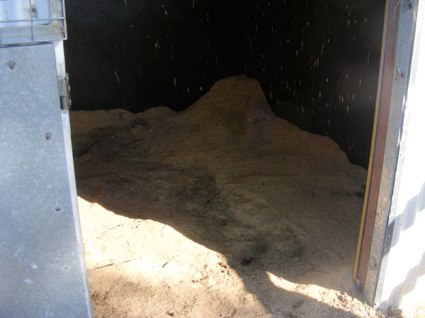 stable sawdust