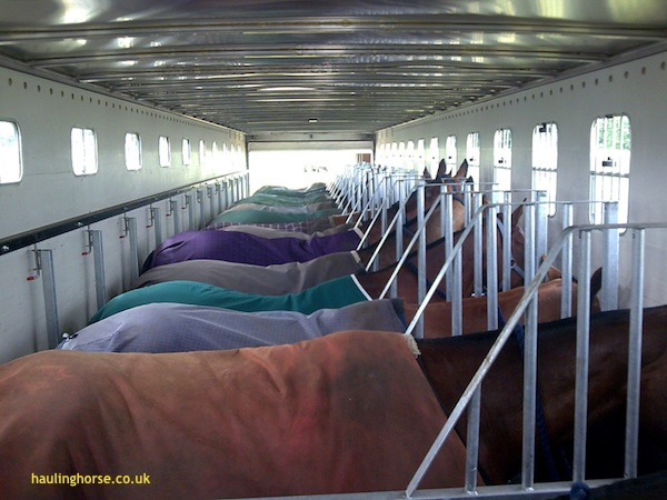 1120 polo horse transport3